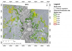 Rembold MAPPING FOREST DEGRADATION 2013